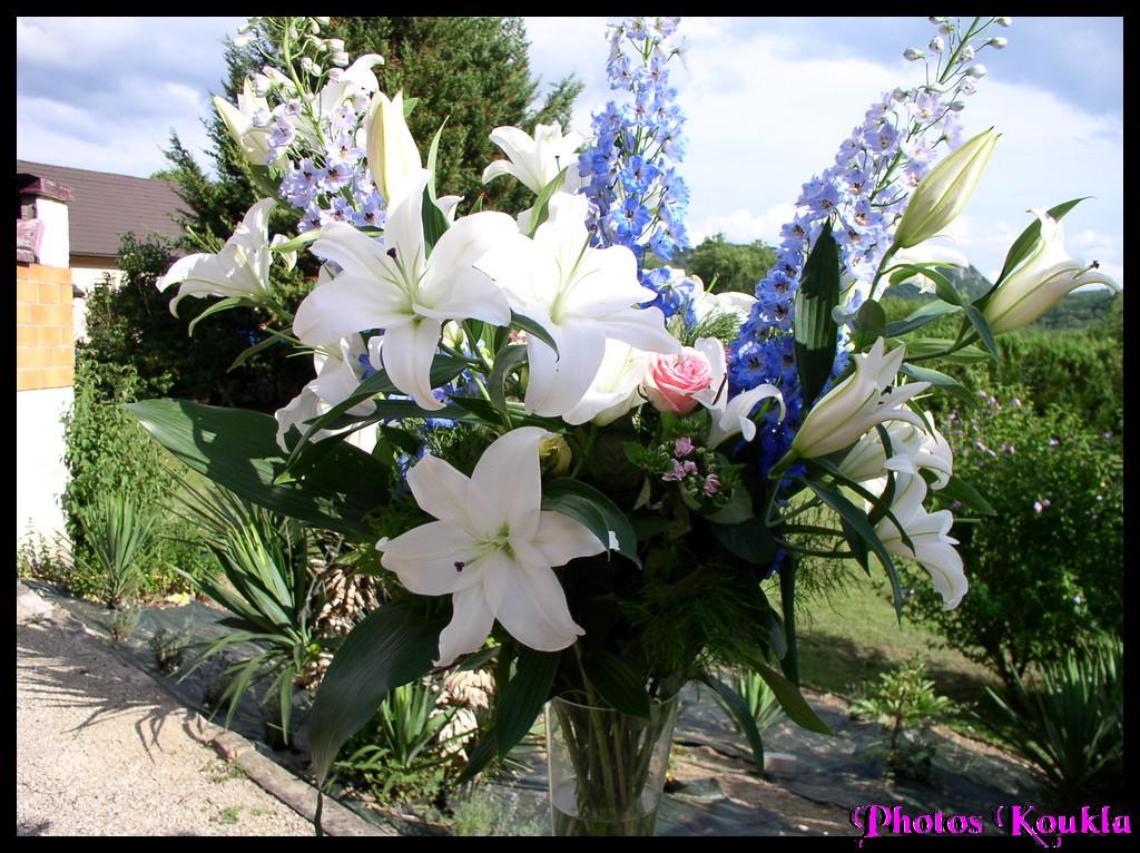 Bouquet de lys blanc pictures for Bouquet de lys